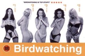 BIRDWATCHING plakat 91x61cm