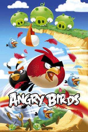 ANGRY BIRDS plakat 61x91cm (1)