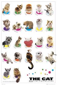 THE CATS plakat 61x91cm