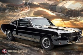 FORD SHELBY plakat 91x61cm