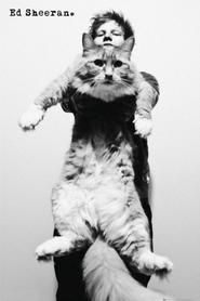 CAT plakat 61x91cm