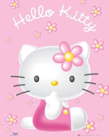 HELLO KITTY PINK plakat 40x50cm