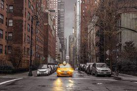 ASSAF FRANK NEW YORK TAXI plakat 91x61cm