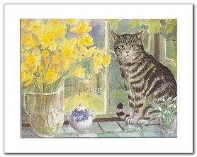 Tabby And Teapot plakat obraz 30x24cm