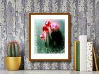 Five Tulips plakat obraz 40x50cm (3)