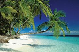 MALDIVES BEACH plakat 91x61cm