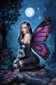 NIGHT FAIRY plakat 61x91cm