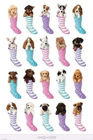 DOGS IN BOOTS plakat 61x91cm