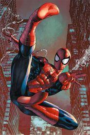 SPIDER-MAN plakat 61x91cm