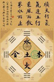 FENG SHUI plakat 61x91cm