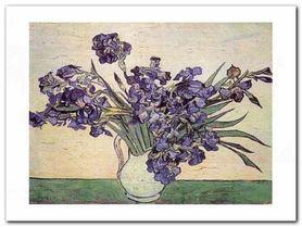 Iris Strauss plakat obraz 40x30cm