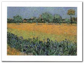 Vue De Arles plakat obraz 80x60cm