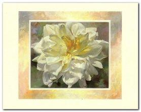Kwiat plakat obraz 30x24cm