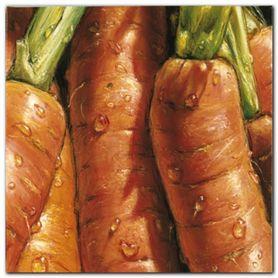 Carrots plakat obraz 50x50cm