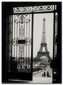 The Eiffel Tower plakat obraz 60x80cm