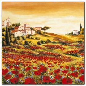 Valley Of Poppies plakat obraz 50x50cm