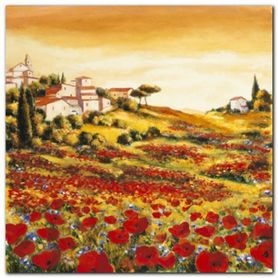 Valley Of Poppies plakat obraz 24x24cm