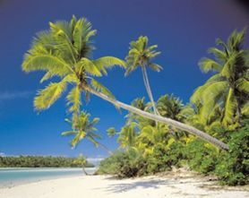 COOK ISLAND fototapeta 368x254cm