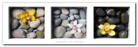 Flowers And Stones plakat obraz 95x33cm