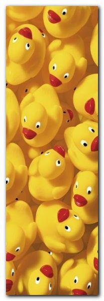 Quack Quack III plakat obraz 33x95cm
