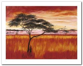 Serengeti Dusk plakat obraz 50x40cm