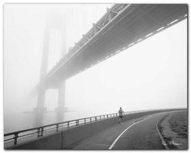Verrazano Bridge plakat obraz 50x40cm