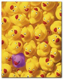 Quack Quack I plakat obraz 40x50cm