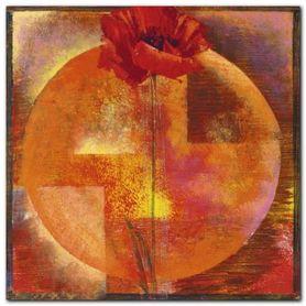 Red Poppy plakat obraz 50x50cm