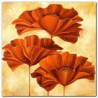 Three Poppies II plakat obraz 50x50cm (1)