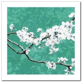Blossom In Green plakat obraz 30x30cm
