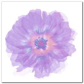 Fleur Violette plakat obraz 30x30cm