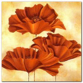 Three Poppies I plakat obraz 30x30cm