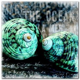 Blue Ocean Shells plakat obraz 30x30cm