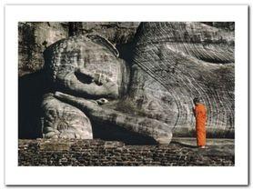 Buddhist Monk plakat obraz 80x60cm