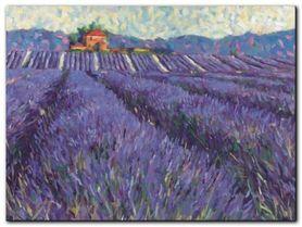 Lavender Fields I plakat obraz 80x60cm