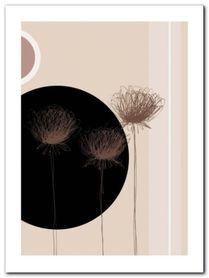 Three Dandelions plakat obraz 60x80cm