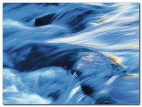 Eternity plakat obraz 80x60cm