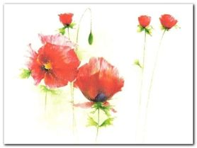 Red Poppies I plakat obraz 80x60cm