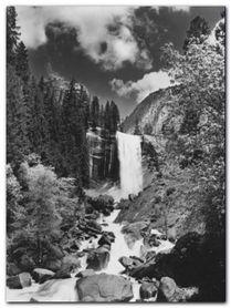 Yosemite Park plakat obraz 60x80cm