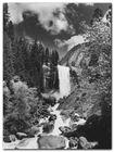 Yosemite Park plakat obraz 60x80cm (1)