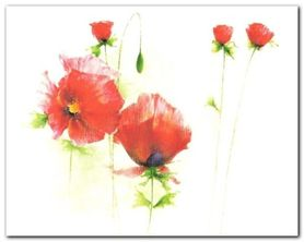 Red Poppies I plakat obraz 30x24cm