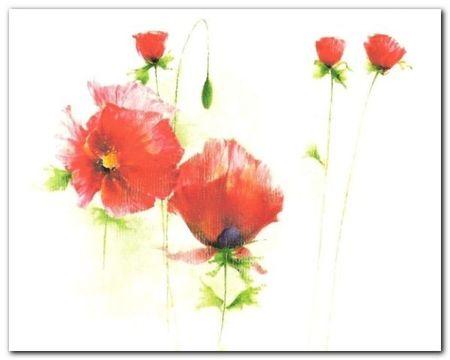 Red Poppies I plakat obraz 30x24cm (1)