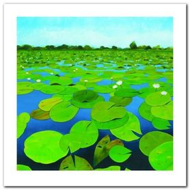 Waterlilies plakat obraz 70x70cm