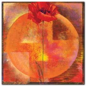 Red Poppy plakat obraz 50x50cm