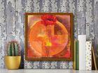 Red Poppy plakat obraz 50x50cm (3)