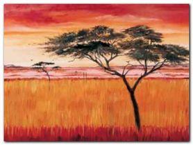 Serengeti Dawn plakat obraz 80x60cm