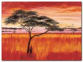 Serengeti Dusk plakat obraz 80x60cm
