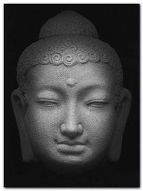 Maitreya plakat obraz 60x80cm