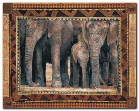 Elephants plakat obraz 50x40cm (1)