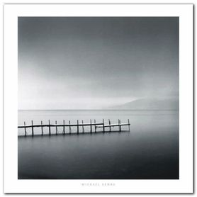 Foggy Morning plakat obraz 70x70cm
